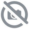 DAC Audio HD & DSD